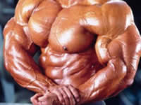 Pautas para el entrenamiento abdominal