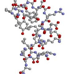 Suplementos dietéticos: Hidrolizados de proteínas