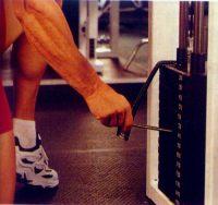 entrenamiento con pesas para principiantes