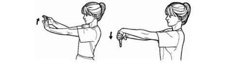Epicondilitis ejercicios de estiramientos