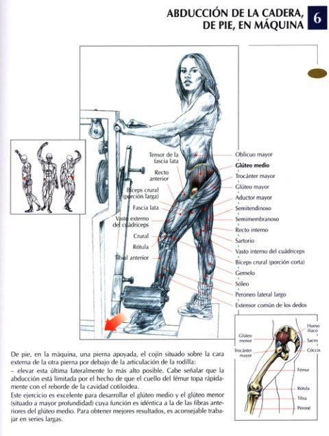 abduccion de la cadera de pie en maquina