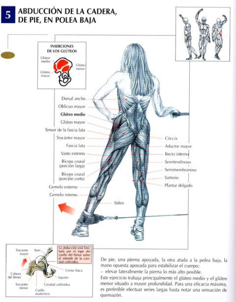 abduccion de la cadera de pie en polea baja