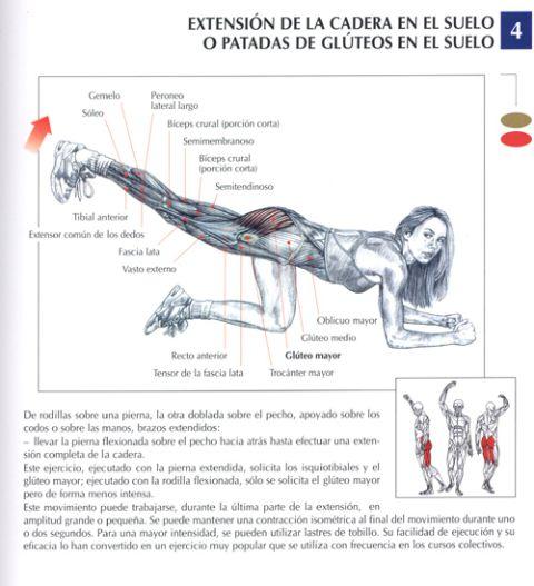 extension de la cadera en el suelo