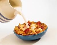 Tabla Calórica Cereales, Lácteos y Grasas