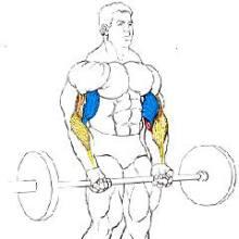 curl de biceps, posición inicial