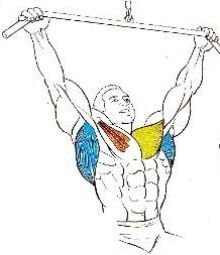 jalón frontal, posición inicial