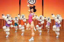 En forma con Fitness Caniche