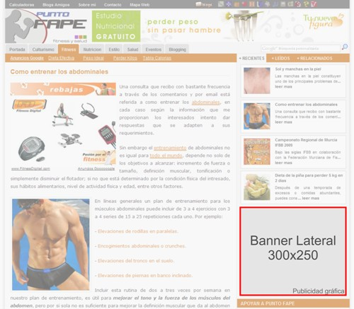 Banner Lateral 300x250