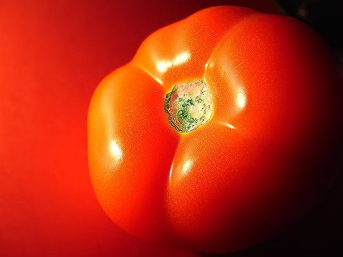 Sopas de tomates frescos: Una receta exquisita y nutritiva