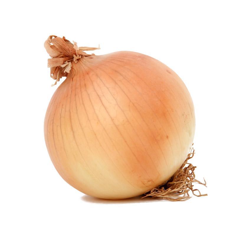 Propiedades nutricionales de la cebolla