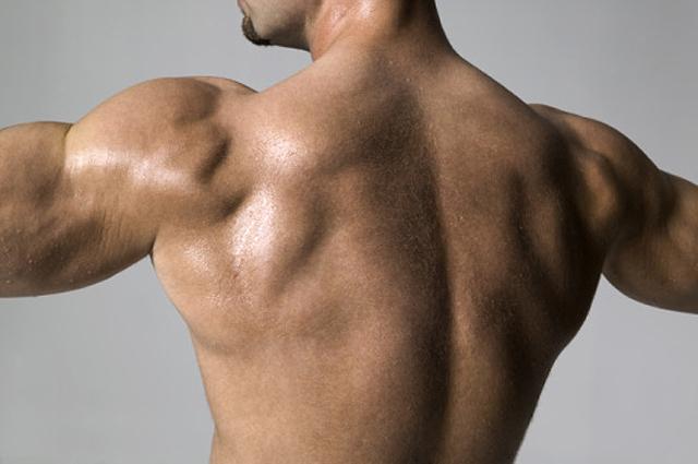 Ejercicios para cuidar los músculos de la espalda