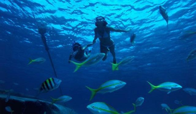 Relax y buceo en Cuba