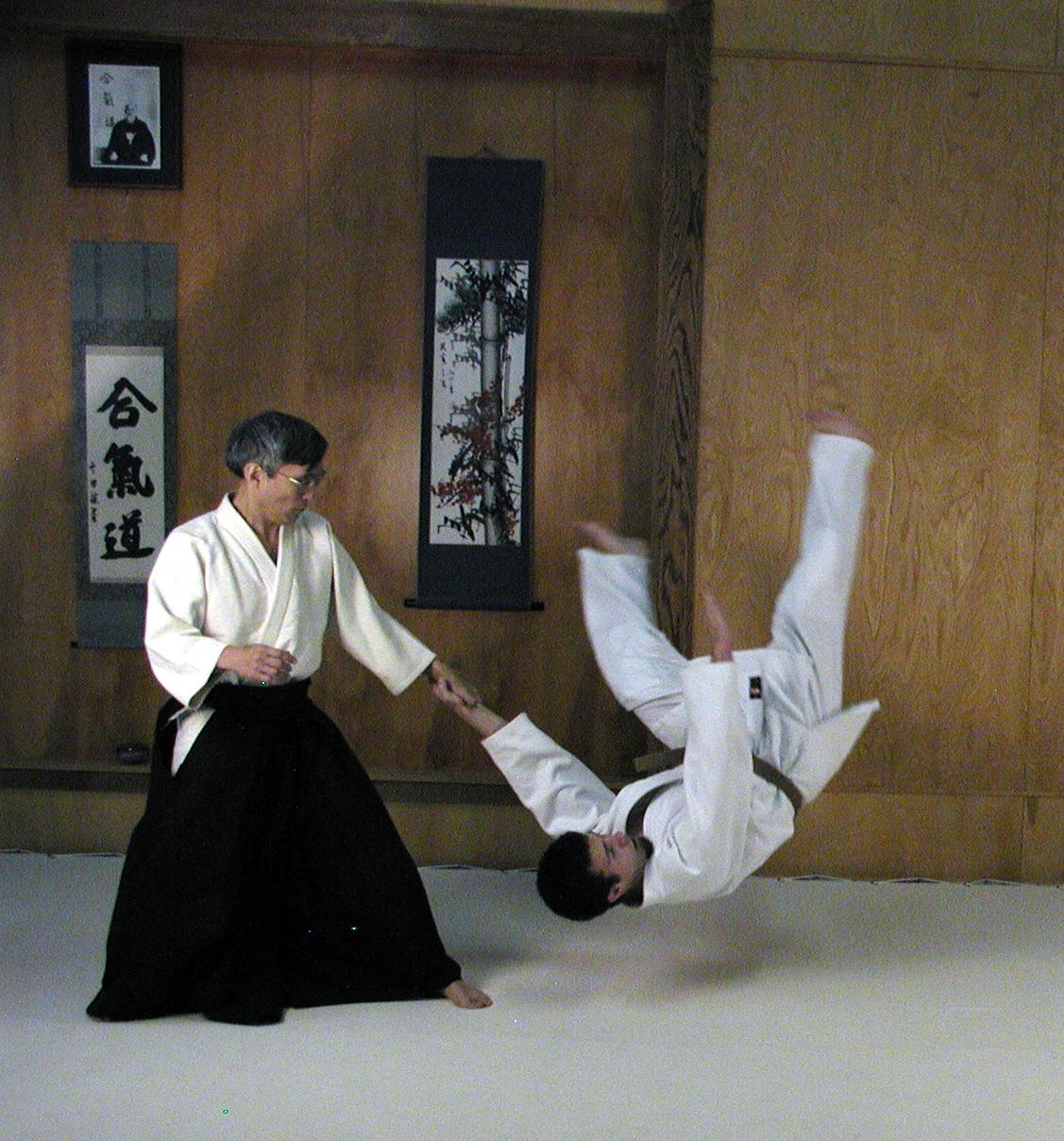 Aikido, el uso de la energía del universo