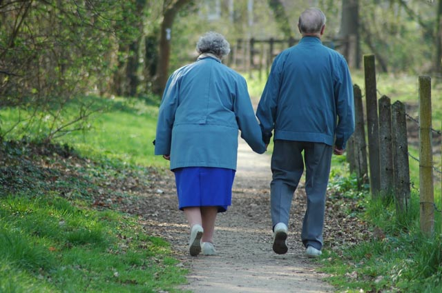Alzheimer, Hierba de San Juan podría combatirlo