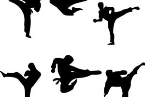 Artes Marciales o Deportes de Combate