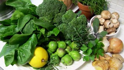 La absorción de nutrientes