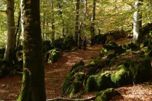 Rutas de senderismo por los caminos de Navarra