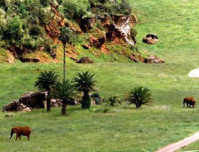 Parque de la Naturaleza de Cabárceno, en Cantabria