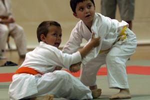 Artes marciales y el sistema educativo japonés