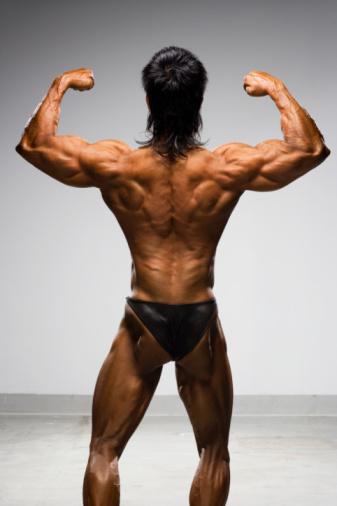 Consigue una espalda más grande