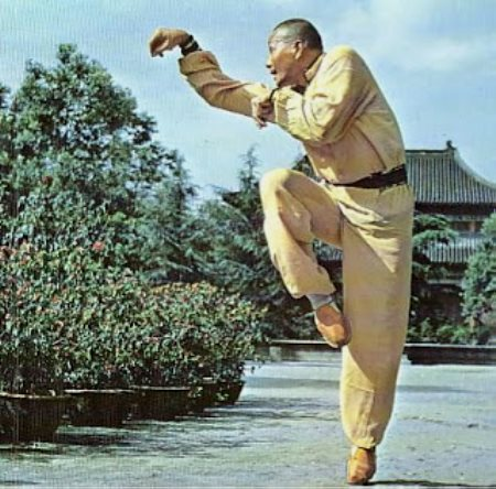 Hou Quan el Estilo del Mono de Kung Fu
