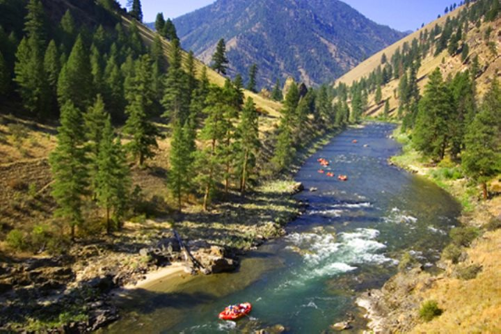 forks of salmon middle eastern singles Middle fork of the salmon river, idaho: see 157 reviews, articles, and 100 photos of middle fork of the salmon river, ranked no35 on tripadvisor among 666 attractions in idaho.