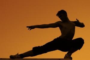 artes marciales y entrenamiento