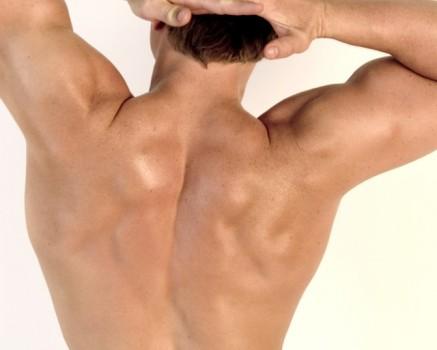 Musculación espalda