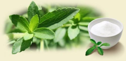 stevia endulzante natural