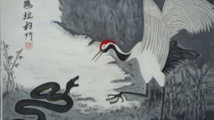 Origen del Tai Chi y su evolución