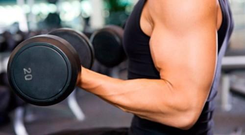 Frecuencia de entrenamiento de cada músculo