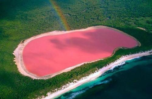 lago-hillier-australia