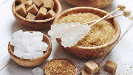 Carbohidratos disacáridos y polisacáridos