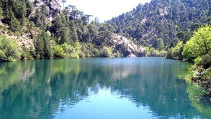 Vivir la naturaleza en las sierras de Cazorla, Segura y Las Villas