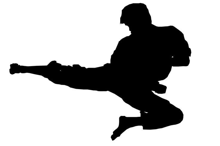 Preparación física específica para Karate