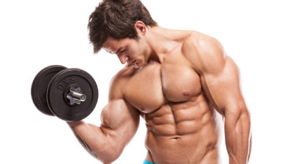 Todo sobre la hipertrofia muscular