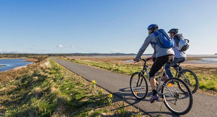 Bicicletas de carretera: Guía de compra para principiantes