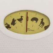 animal_scales.jpg